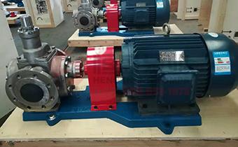 怎样选择不锈钢齿轮泵?